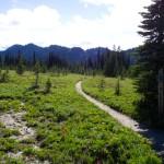 Snowgrass Flats