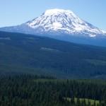 Mt. Adams from trail #7A