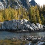 Larch at Leprechaun Lake