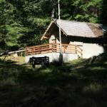 The ranger station at Dosewallips CG