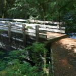 The bridge at Dose Forks camp.
