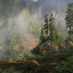 Marmot Lake morning