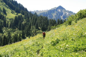 Greg amidst the flower gardens in the hilly meadows the trail traipsed through...