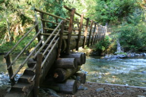 Still in good shape, a neat old bridge fashioned out of a log, crosses the creek here.