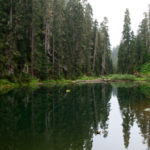 Doreen Lake, once the fog had lifted. There are some nice sized, and hungry trout in this lake.