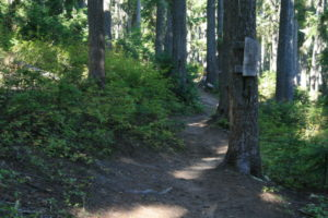 first sign on PCT, entering William O. Douglas Wilderness
