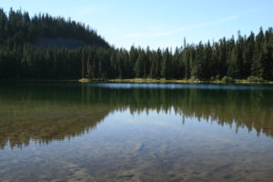 Nearly as many lakes as there are meadows, this is a typical representation of the lakes here, shallow, sandy bottom, and stocked with fish! Deer Lake.