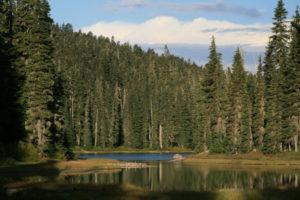 Eastern end of Dumbell Lake.