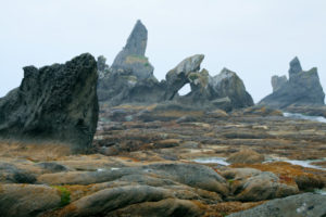 Cool rock formations at the rock reef by trailhead.