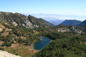 Cooney Lake Basin
