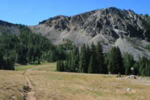 where the Crickets were jumping in the meadows before heading over Deadmans Pass