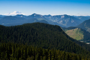 Just before reaching the Katwalk, if you looked behind you, you get this view of the ski resort, and Mt. Rainier